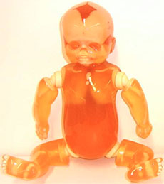 Whole Body Newborn Baby X-Ray Phantom