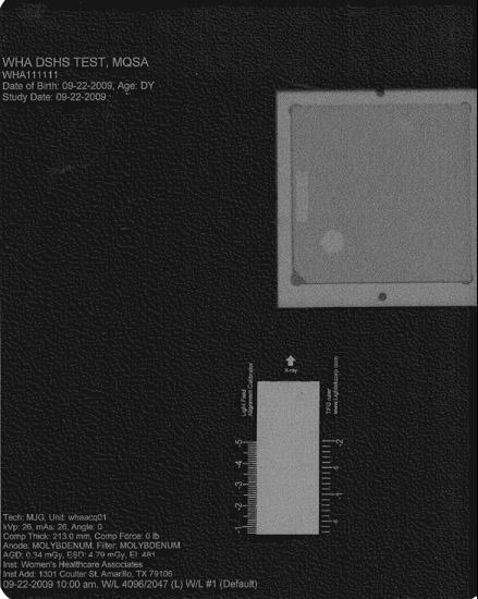 TFG标尺扫描图像